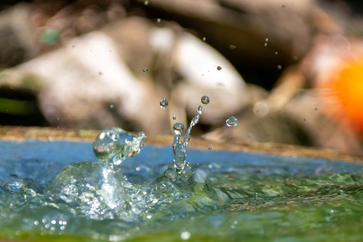 Water, Splash, Drop Of Water, Drip, Spray, Nature, Wet