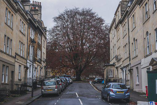 Tree, Hill, Street, Way, Road, Architecture, House