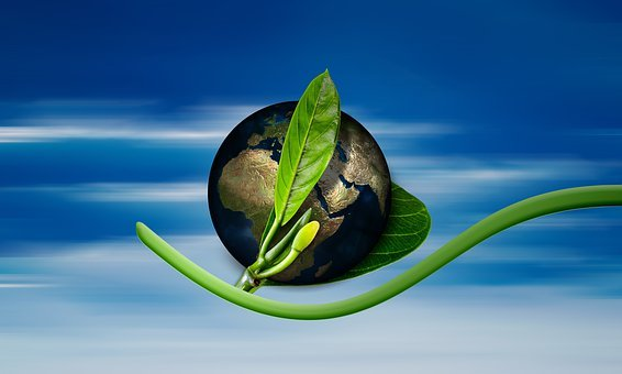 Earth, Globe, Birth, New, Arise, Environment