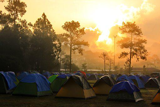 Camp, The Forest, Tent, Nature, The Sun Rises