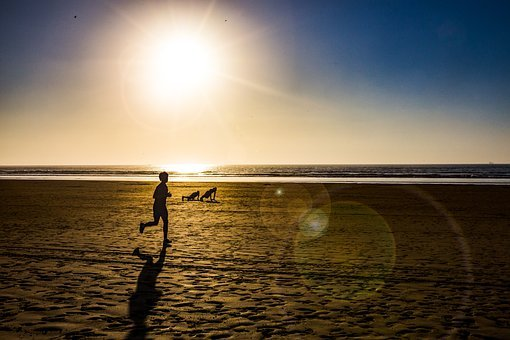 Beach, Workout, Sun, Fitness, Yoga, Training, Sport