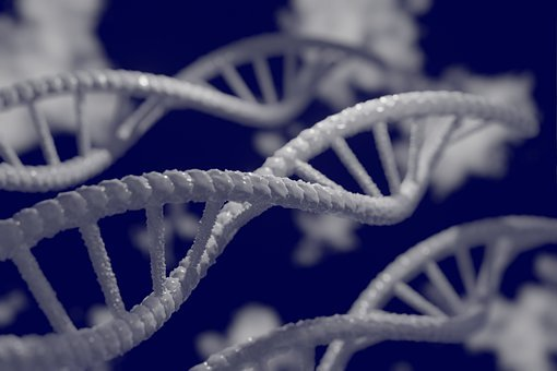 Dna, 3d, Biology, Genetic, Research, Biotechnology