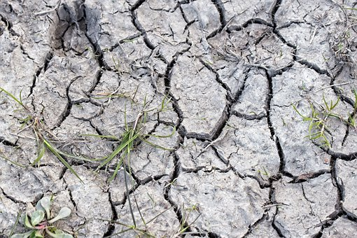 Earth, Dry, Crack, Bottom, Mud, Texture, Tears, Ground