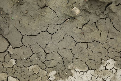 Terry, Cracked, Dry, Climate, Water, Cracks