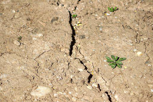 Drought, Ground, Agriculture, Environment, Cracks