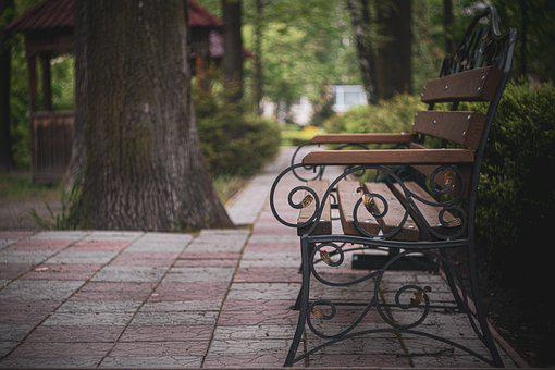 Bench, Park, Garden, Tree, Seat, Nature, Green, Chair