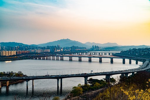 Forsythia, River, Bridge, City, Seoul, Korea, Sky