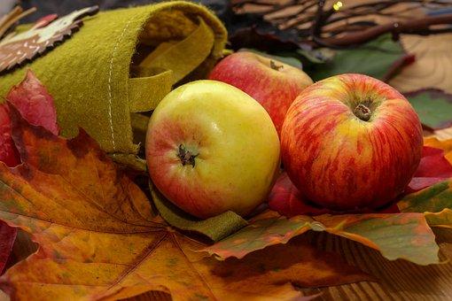 Apple, Healthy, Autumn, Leaves, Bag, Felt, Green, Fruit