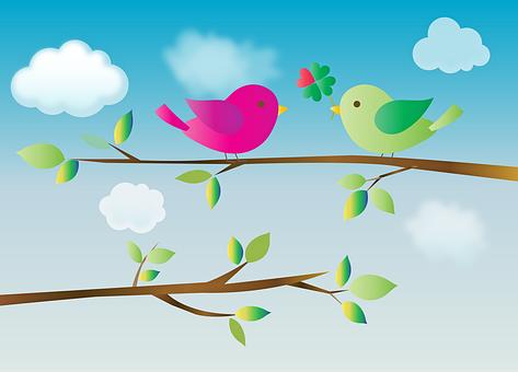 Birds With Heart, Birds On Branch, Love, Heart, Birds