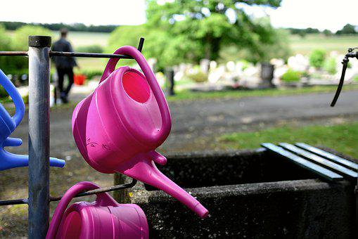 Watering Can, Cemetery, Water, Grave Care, Irrigation