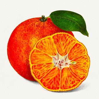 Orange, Fruit, Tropical, Food, Health, Healthy, Sweet
