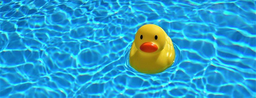 Pool, Water, Swimming Pool, Swim, Summer, Season, Blue
