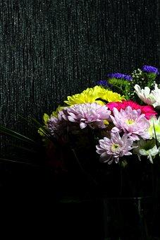 Bouquet, Gerbera, Chrysanthemum, Gift, Flowers