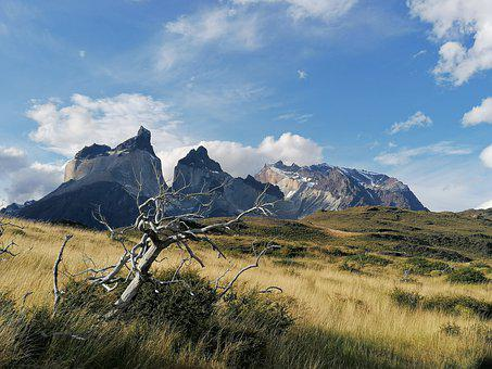 Patagonia, Chile, The Towers Of The Paine, Ande