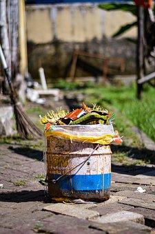 Trash, Blur Background, Focus