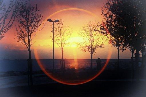 Sunset, Silhouette, Sky, Offer, Tree