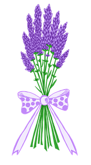 Lavender, Flower, Flowers, Bouquet, Herbs, Blue, Summer