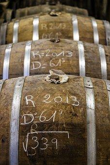 Cognac, Charente, Alcohol, Vineyard, Grape, Cluster