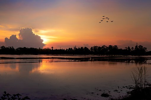 Sunset, Nightfall, Sky, Lights, Orange