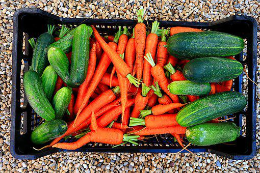 Vegetables, Pickles, Zucchini, Carrots, Crate, Food