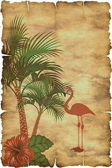 Palm, Flamingo, Wallpaper, Background, Pattern