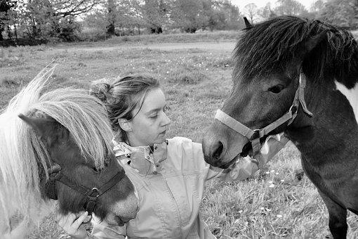 Ponies, Pony With Young Girl, Shetland Ponies