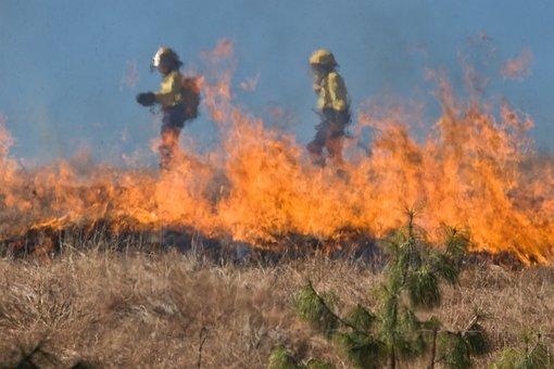Firefighter, Wildfire, Grass Fire, Burn, Flame, Danger