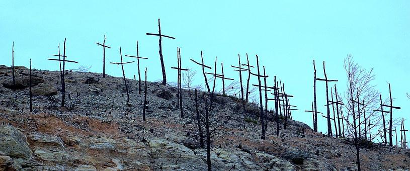Forest Fire, Burnt Mountain, Degradation, Death