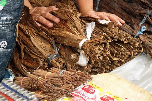 Tobacco, Leaves, Leaf, Dried, Brown, Unhealthy, Cigar