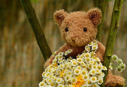Bouquet, Teddy, Teddy Bear, Floral Greeting, Birthday
