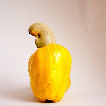 Cashew, Fruit, Yellow, Nut, Ripe