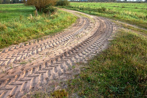 Away, Trace, Traces, Tire Track, Reprint, Nature