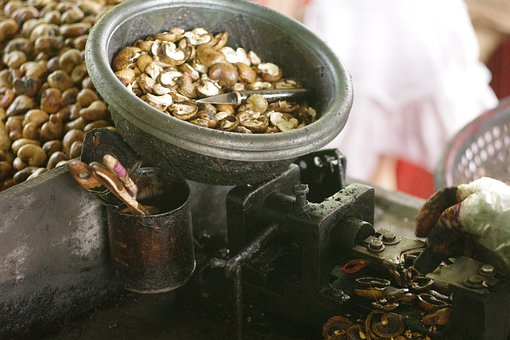 Cashew Nuts, Nits, Peeling, Peeled, Nutshell, Machine