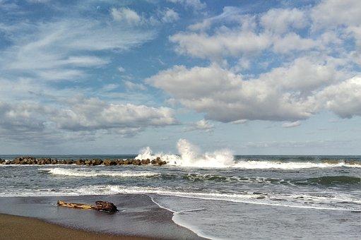 Sky, Cloud, Wind, Sea, Beach, Wave, Driftwood
