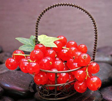 Currants, Fruit, Red Currant, Red, Fruits, Sour, Sweet