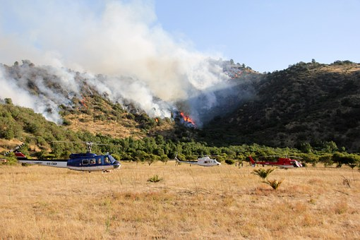 Helicopters, Forest Fire, Fire, Death, Tree