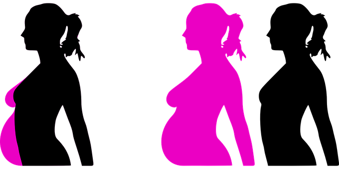 Pregnancy, Reproduction, Months, Profile, Lady, Female