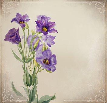 Purple, Flowers, Vintage, Aged, Frame, Sign, Border