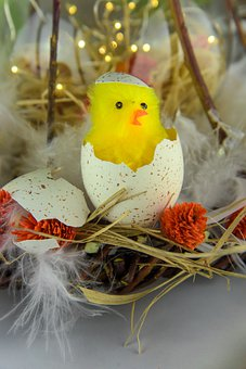 Easter Chick, Easter, Easter Eggs, Easter Theme, Color