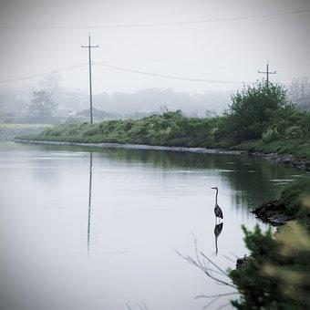 Morning, Foggy, Landscape, Nature, Morgenstimmung, Mood