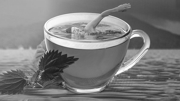 Tea, Swimming, Swim, Table, Resort, Taj, Bekal, Kerala