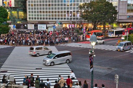 Transportation, Traffic, Building, Zebra Crosswalk