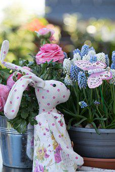Spring, Hare, Rabbit, Cute, Easter, Figure