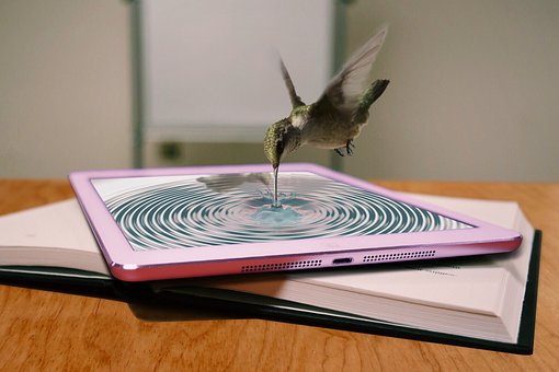 Mobile Phone, Book, Bird, Water, Assembly, Composing