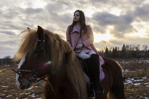 Horse, Horses, Pony, Sports