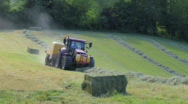 Tractor, Field, Boot, Hay, Grass, Work, Agriculture