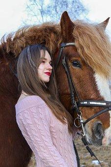 Horse, Animals, Nature, Winter, Pasture, Equine, Horses