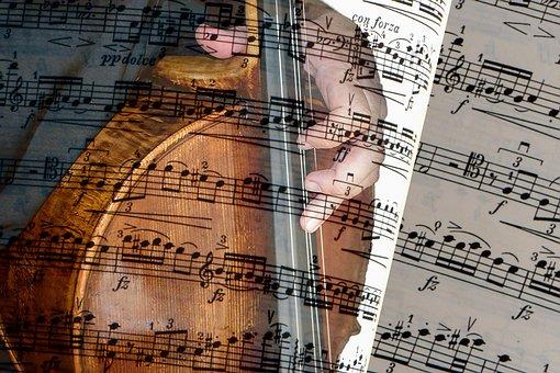 Cello, Classical Music, Strings, Musician, Sound