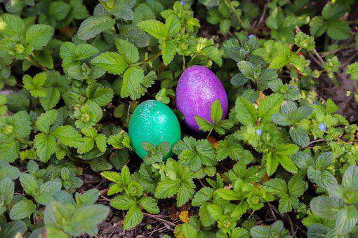 Egg, Easter, Happy, Color, Colored