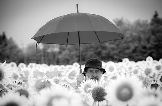 Man, Umbrella, Sunflowers, Time, Adult, Relationship